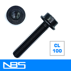 Cl.100 Flange Socket Head Cap Screw