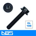 Socket Flange Screws