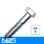 Gr.5 Hex Cap Screws