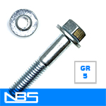 Gr.5 Non-Serrated Frame Bolts